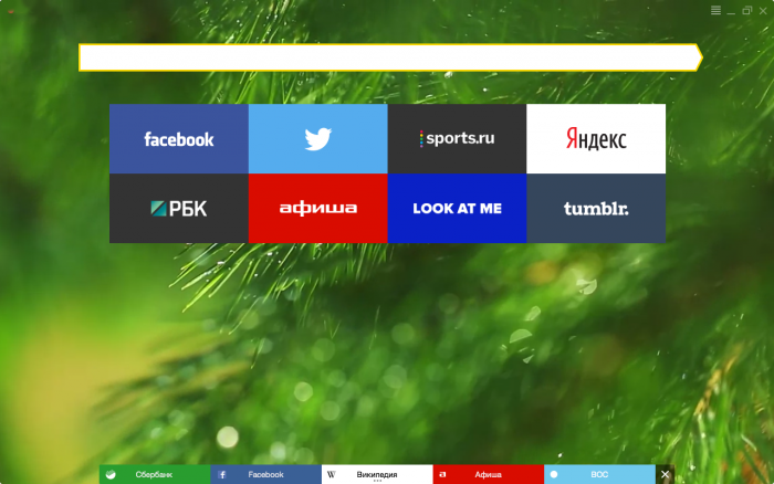 How to customize the look of Yandex  Free Yandex Browser